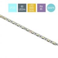 CONTEST PURETAPE6020-FRIO, Tira 60 LED/m, 5 m, BLANCO FRIO 6000ºK