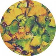 ROSCO GOBO VIDRIO 86635, GINKO, Color
