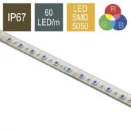 CONTEST COLORTAPE6067 - Tira de LED RGB 60 LED/m 24V, 5m- IP67