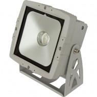 BRITEQ LDP-COBWASH 60TC, COB 60W RGB IP65 120º